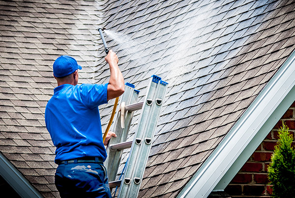 Roof Cleaning For Asphalt Shingle Roofs Kentuckyaction